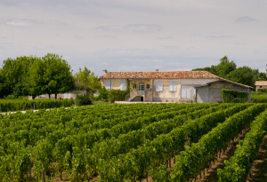 le-medoc